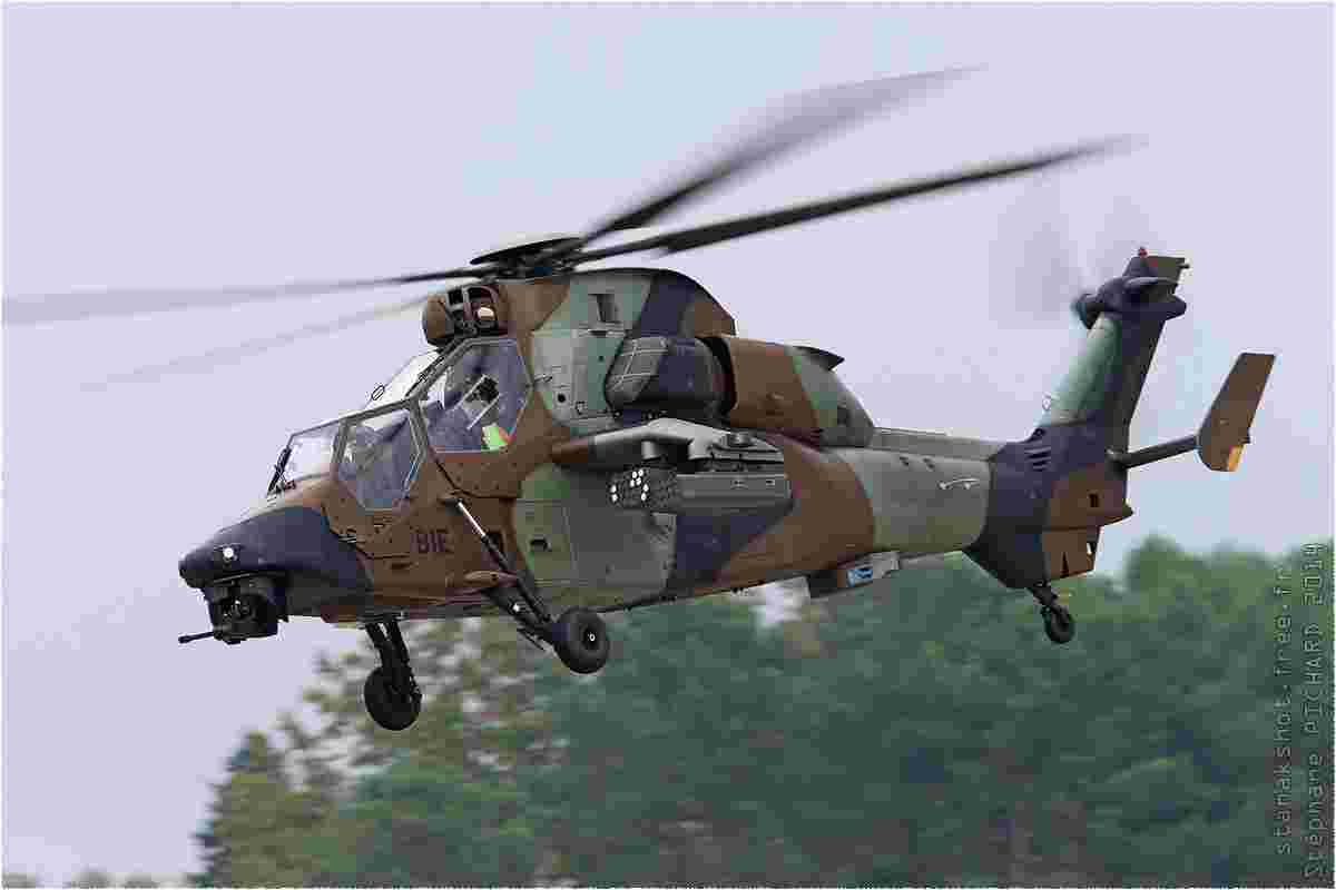 tofcomp#8018-Tigre-France-army