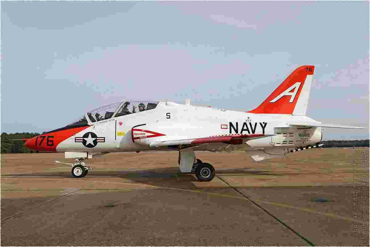 tofcomp#8177-Hawk-USA-navy