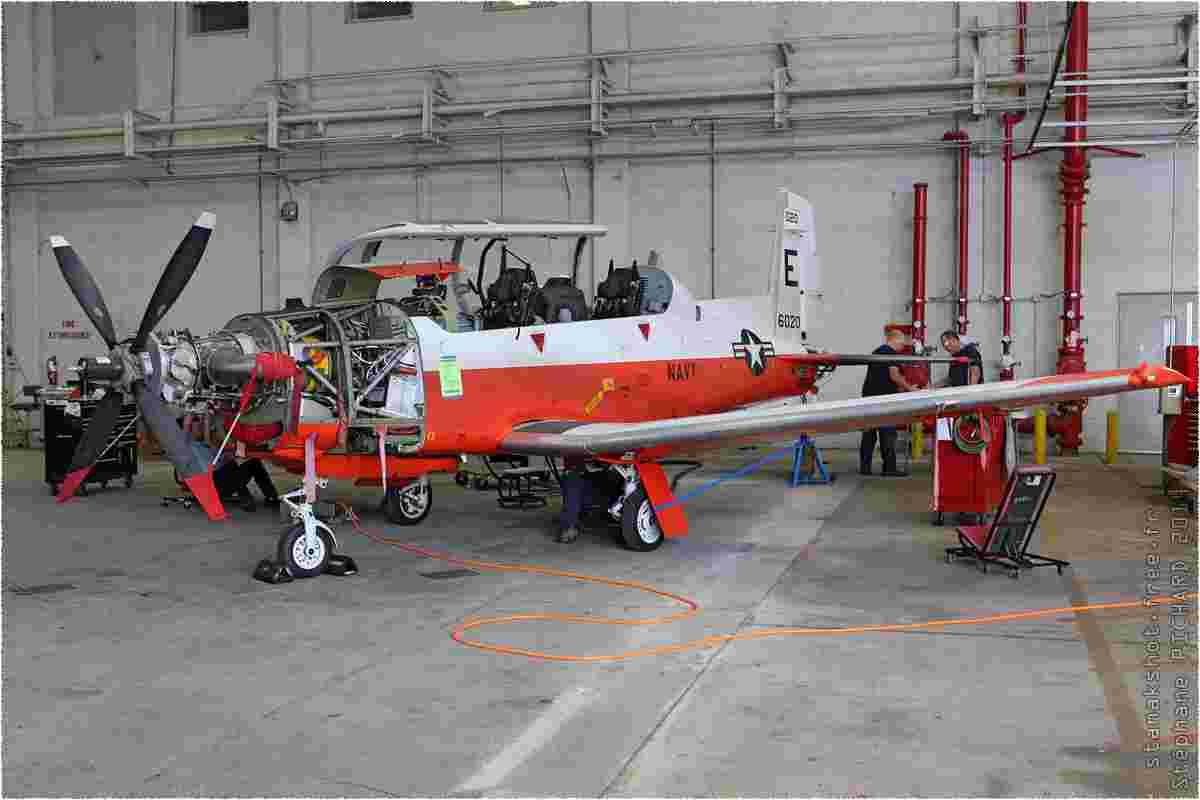 tofcomp#8236-Texan-2-USA-navy