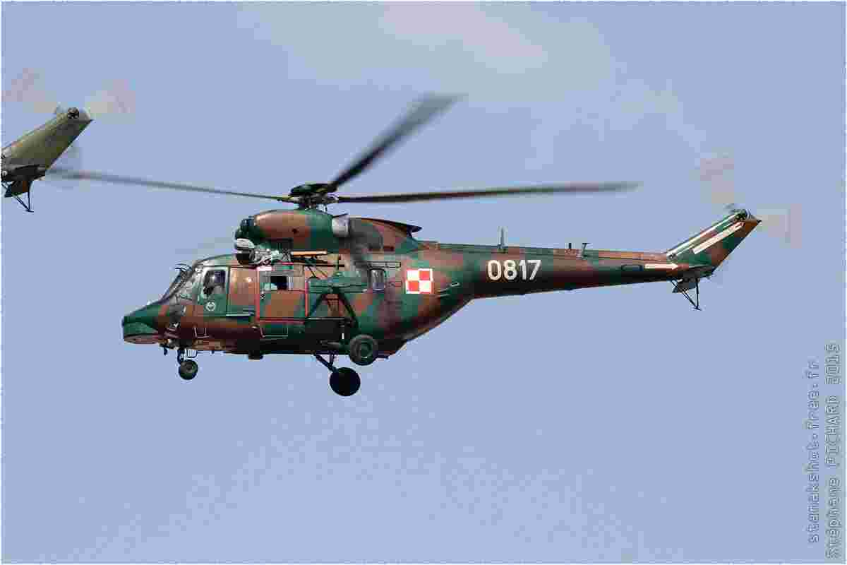 tofcomp#8805-Sokol-Pologne-army