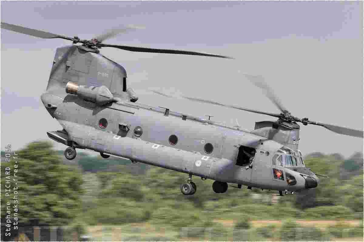 tofcomp#9426-Chinook-Pays-Bas-air-force