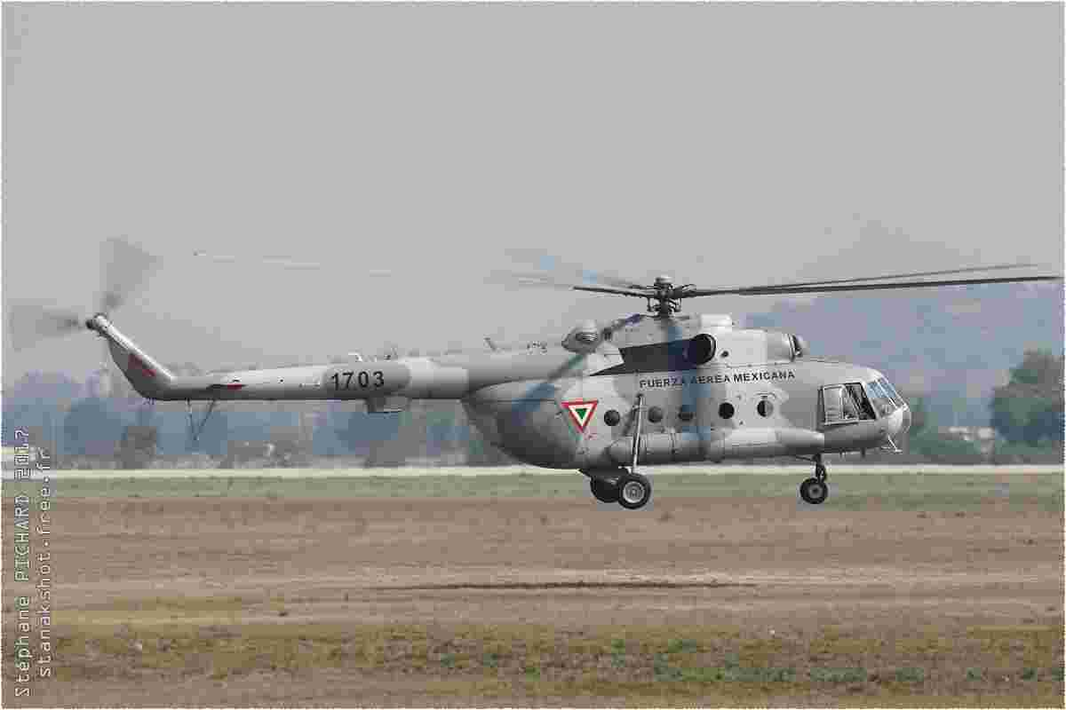 tofcomp#9830-Mi-8-Mexique-air-force