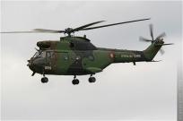 tn#295-Puma-1055-France-army