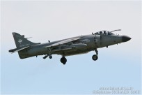 tn#340-British Aerospace Sea Harrier FA2-ZH804