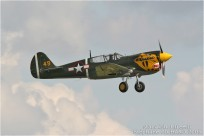 vignette#360-Curtiss-P-40M-Warhawk