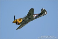 tn#362-Curtiss P-40M Warhawk-49