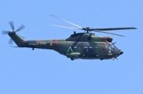 tn#8-Puma-1206-France - army