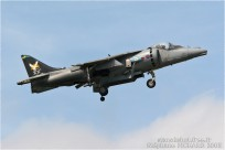 tn#950-Harrier-ZD407-Royaume-Uni-air-force