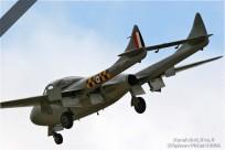 vignette#1069-De-Havilland-Vampire-T11