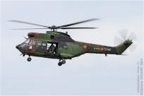 tn#1284-Puma-1243-France-army