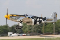 vignette#11766-North-American-P-51D-Mustang