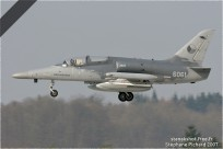 tn#2050-Alca-6061-Tchequie-air-force