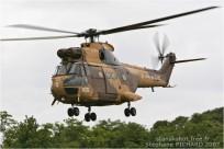 tn#2684-Puma-1177-France-army