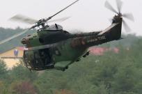 tn#3027-Puma-?-France-army