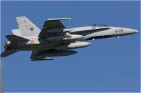 vignette#3980-McDonnell-Douglas-EF-18A-Hornet