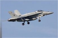 vignette#4065-McDonnell-Douglas-EF-18A-Hornet