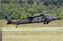 vignette#4274-Sikorsky-UH-60A-Black-Hawk