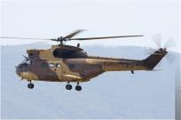 tn#4843-Puma-1071-France - army