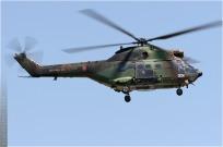tn#4844-Puma-1163-France-army