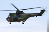 tn#4846-Puma-1198-France-army