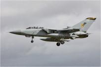 vignette#5339-Panavia-Tornado-F3