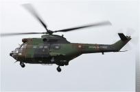 tn#5615-Puma-1519-France-army