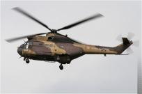 tn#5616-Puma-1145-France-army