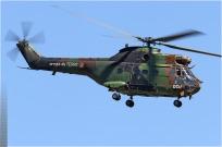 tn#5630-Puma-1171-France-army