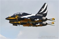 tn#6133-Korea Aerospace T-50B Golden Eagle-10-0056
