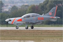 Pologne - air force
