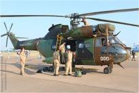 tn#7255-Puma-1198-France-army