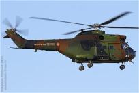 tn#7364-Puma-1172-France - army