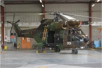 tn#7392-Puma-1052-France-army