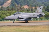 vignette#8362-British-Aerospace-Hawk-208