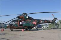 tn#8804-Sokol-0617-Pologne-army