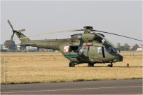 tn#8808-Sokol-0903-Pologne-army