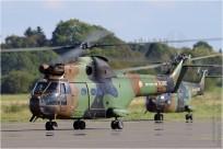 tn#8889-Puma-1123-France-army
