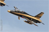 tn#9007-MB-339-435-Emirats-Arabes-Unis-air-force