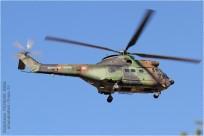 tn#9550-Puma-1243-France-army