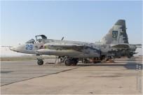 tn#9706-Sukhoi Su-25M1-29 blue