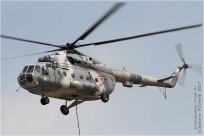 #9833 Mi-8 1714 Mexique - air force